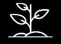 Icone albero
